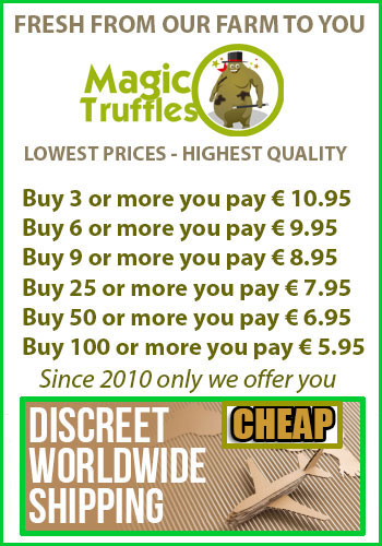 free shipping magic truffles amsterdam sclerotia